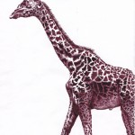 giraffe sm