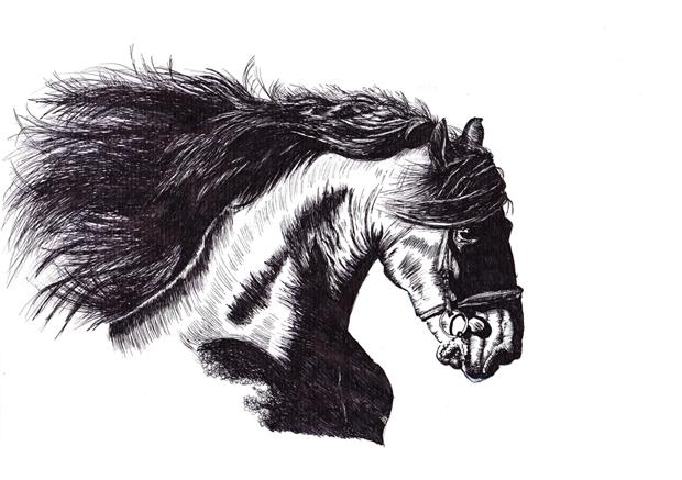 horse head sm
