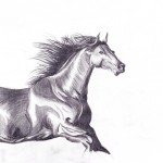 horse pencil sm