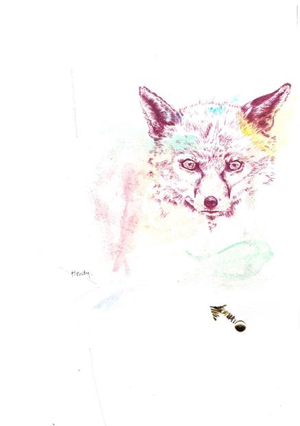 howdy fox sm