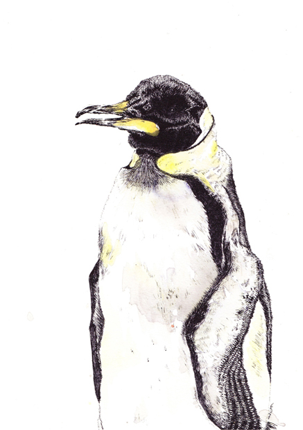 painted penguin sm