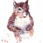 painted squirrel sm