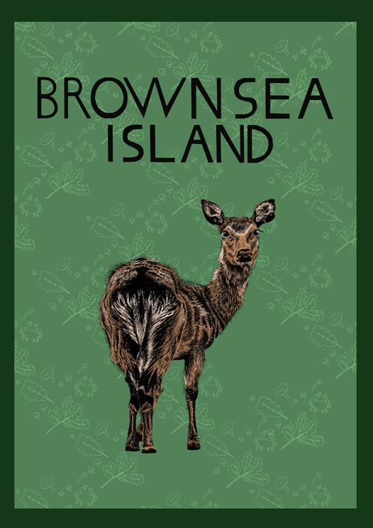 brownsea deer small